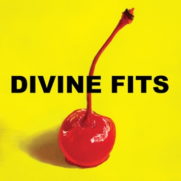Divine Fits: Would That Not Be Nice  [New Music]
