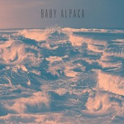Baby Alpaca - Sea of Dreams