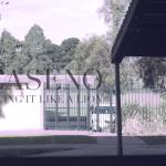 Caseno - Living It Like A Lion - acid stag