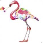 Flamingo Jones - Botanical Animal [New Music] - acid stag