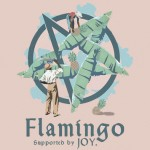 Flamingo - Lost On You [New Single + Tour News] - acid stag