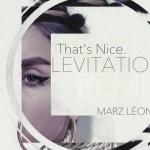 Marz Leon - Levitation (That's Nice Remix) - acid stag