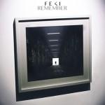 Feki - Remember - acid stag