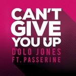 Dolo Jones - Can't Give You Up (ft. PASSERINE) - acid stag
