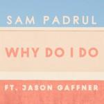 Sam Padrul - Why Do I Do (ft. Jason Gaffner) - acid stag