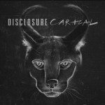 Disclosure - Caracal - acid stag